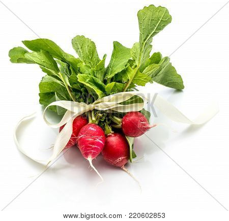Bunch of whole red radish with fresh green leaves tied by ivory bowknot isolated on white background