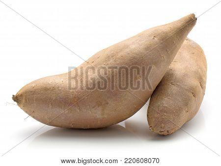 Sweet potato isolated on white background two whole raw