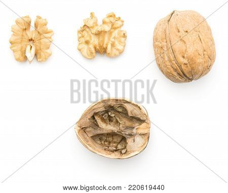 Walnut collection pattern top view isolated on white background one whole unshelled two different sides of shelled nut and hollow shell