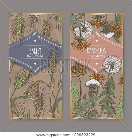 Set of two color labels with Barley aka Hordeum vulgare and Dandelion aka Taraxacum officinale sketch. Used as coffee substitute. Hot drinks collection. Great for cafe, bars, tea ads.