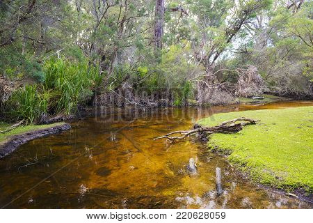 Fresh water creek by Refuge Cove Campground in Wilsons Promontory National Park, Victoria, Australia