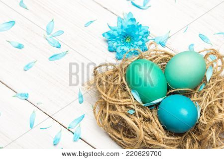 Easter background with eggs, nest and catkins on wooden background, copy space