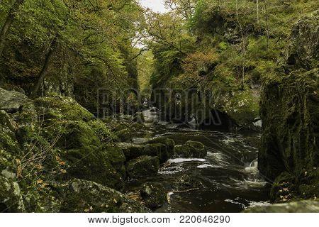 Fairy glen in Betws y Coed, Snowdonia national park, Wales.