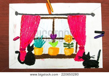 Colorful drawing: Window with window curtains, beautiful flowers and cats.