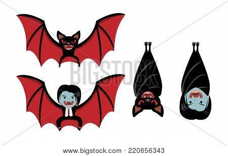 Vampire bat and Dracula on white, vector cartoon design