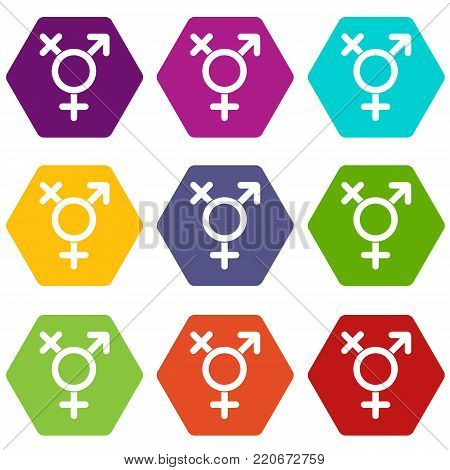 Transgender sign icon set many color hexahedron isolated on white vector illustration