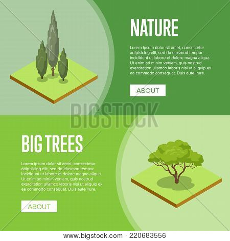 Big trees and decorative plants isometric posters. Public parkland zone landscape design, outdoor summer park recreation vector illustration. Natural green grass and trees 3d elements.