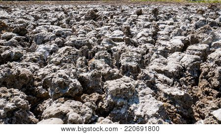 Barren ground after the farm : Background or texture.