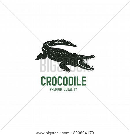 crocodile logo template. Symbol of alligator, Crocodile with text. Wild animal typography badge design. Vintage hand drawn insignia. Stock vector illustration isolated on white background.