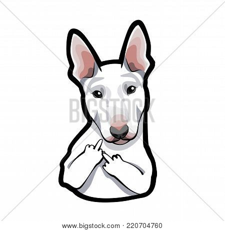 Vector image of an dog bull terrier on white background with middle finger. Illustrated portrait of dog.