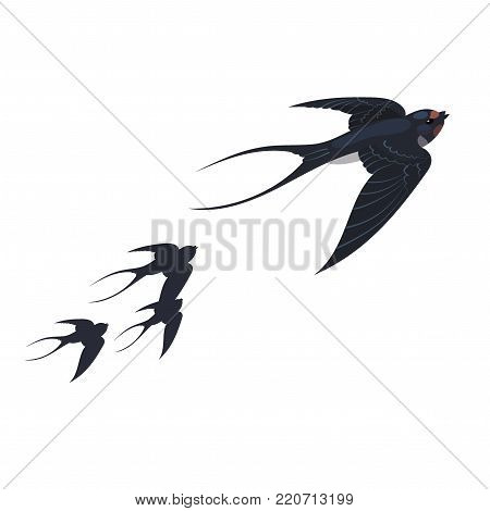 A flock of swallows. Spring birds in flight. A cartoon illustration.