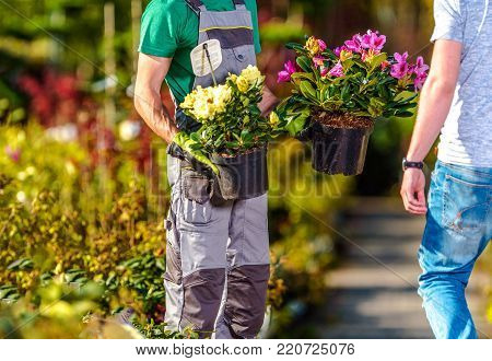 Flowers Sale Industry. Garden Store Worker Showing Some Flowering Plants to His Client. Landscaping and Gardening Theme.