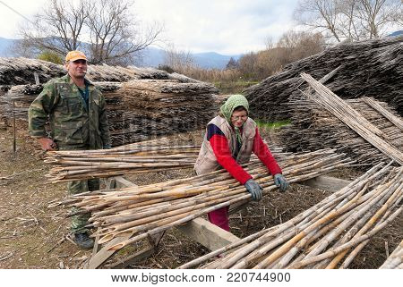 PRESSES LAKES, GREECE - DECEMBER 5, 2009: Two farmers, man and woman, work in their field near the Big Prespa lake in Greece on December 5, 2009