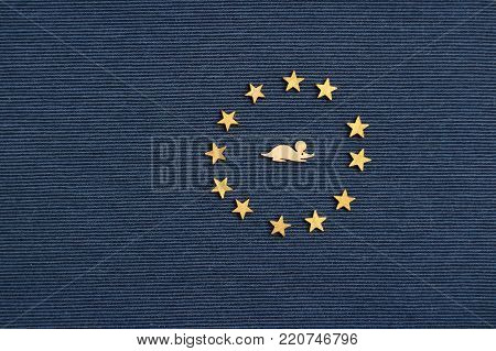 Mouse in the center of the starry circle on blue field, flag mouse kingdom, flat lay, copy space