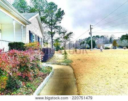 A high definition view of a front porch walkway to a white house with flower bushes.