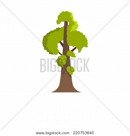 Sequoia icon. Flat illustration of sequoia vector icon isolated on white background