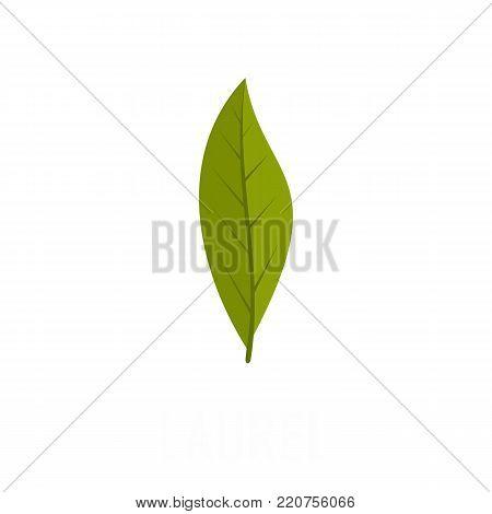 Laurel leaf icon. Flat illustration of laurel leaf vector icon isolated on white background