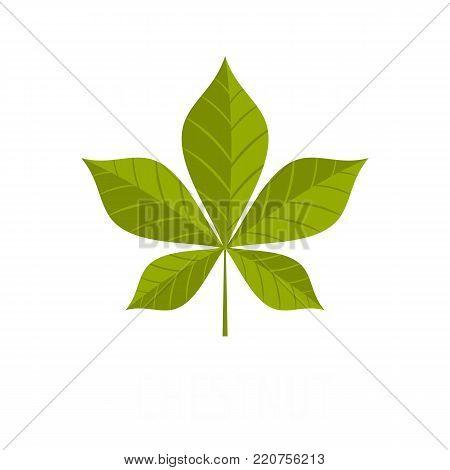 Chestnut leaf icon. Flat illustration of chestnut leaf vector icon isolated on white background