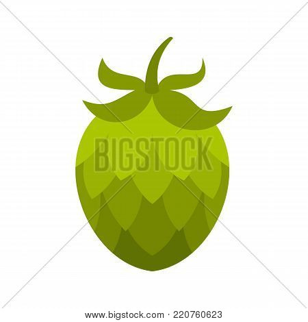 Hop icon. Flat illustration of hop vector icon isolated on white background