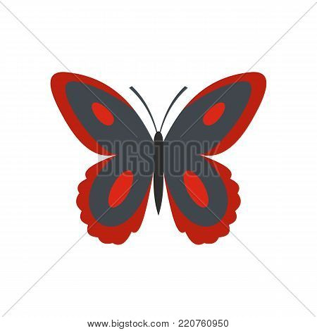 Spotted butterfly icon. Flat illustration of spotted butterfly vector icon isolated on white background