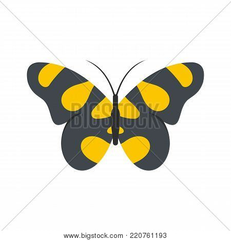 Butterfly in wildlife icon. Flat illustration of butterfly in wildlife vector icon isolated on white background