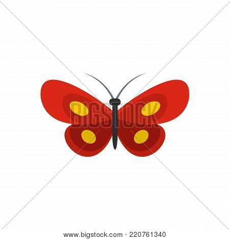 Tiny butterfly icon. Flat illustration of tiny butterfly vector icon isolated on white background