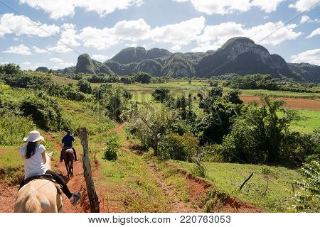 Horseback riding in the tropical valley of Vinales (Cuba)