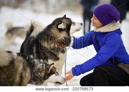Smiling young woman hugging husky dog