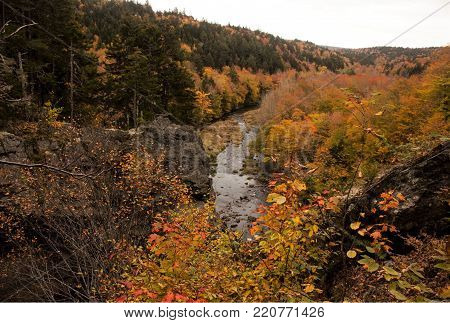 Autumn shot of a river nestled deep in the forest surrounded with rock cliffs and natures brilliant colors