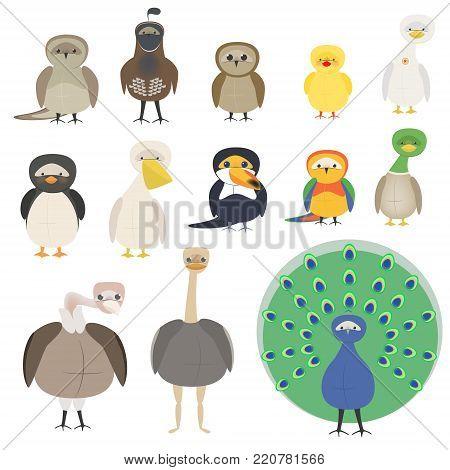 A set of different birds. A parrot, a penguin, a sparrow, an owl, a pelican, a toucan, a peacock. Cartoon