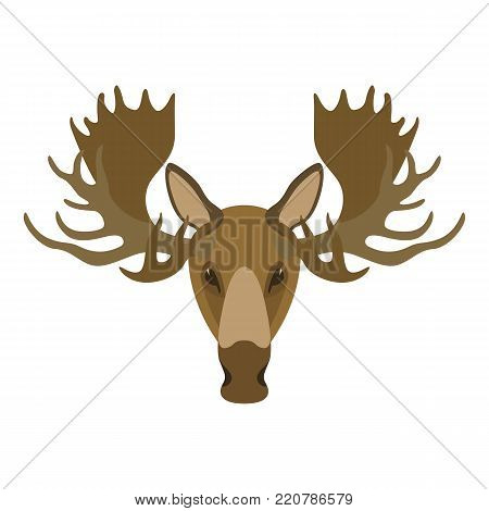 moose head vector illustration   flat style  front side
