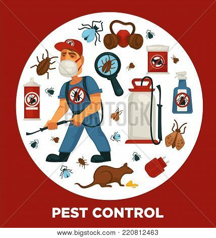 Extermination or pest control service company information poster template for sanitary domestic disinfection. Vector flat design of disinfectant equipment spray for rodent mouse rats, cockroaches and mite insects