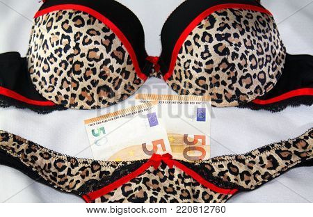 two fifty euro banknotes and sexy leopard underwear lingerie