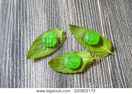 mint candy on true mint leaves, green mint candy with mint flavor