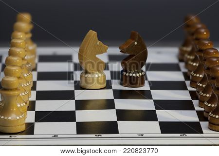chess knight confrontation head to head, Chess figures on a chessboard