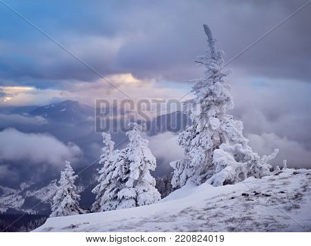 winter landscape with trees and mountains covered with snow and frost
