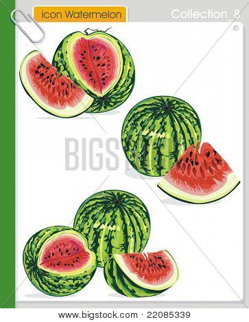 COLLECTION_8 Vector food abstract Icons. Abstract watermelon.