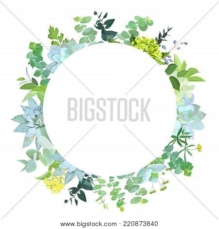Herbal mix vector round frame. Hand painted plants, branches, leaves, succulents and flowers on white background. Echeveria, eucalyptus, green hygrangea, brunia.Natural card.Isolated and editable