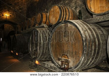 Barrels for storing wine in an old cellar