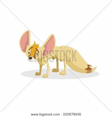 Cartoon trendy design fennec fox. African savanna animal. Wildlife and zoo vector illustration icon.