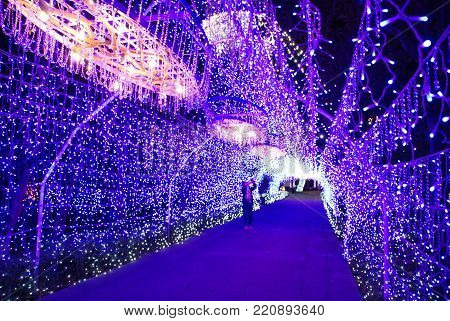 Inside a blue illuminated tunnel on Winter Illuminations festival in Fujisawa, Japan
