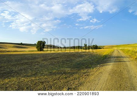 The Most Beautiful Continental Climate Summer Bear Landscape Pictures, Continental Climate Nature La