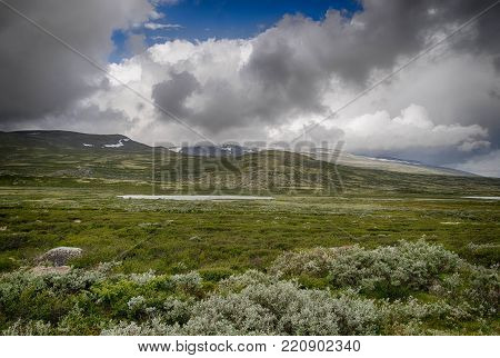 Dramatic Norwegian Landscape In Cold Summer