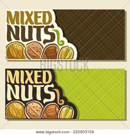Vector banners for Nuts with copy space, card with healthy walnut, sweet almond nut, forest hazelnut, pistachio in cracked nutshell in a row, veg mix label with text mixed nuts for vegan grocery store