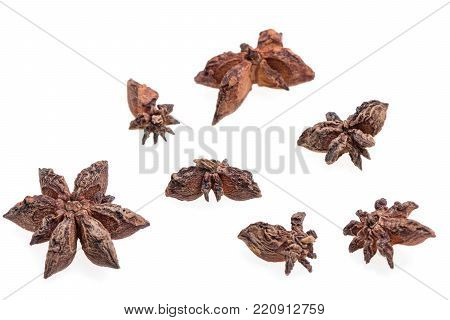Composition of anise stars on white background