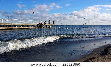 Gdynia, Poland - January 07, 2018: Sunday walk by the sea, people feed birds.