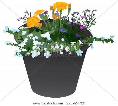 A black flower planter containing multiple varieties of flowers