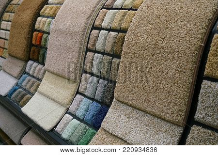 Colorful carpet samples in the store for design