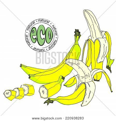 Banana. A whole banana, peeled and slices. A set of fruits. Flat graphic design elements.