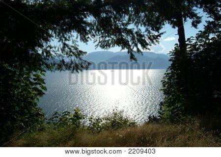 The Ocean Near Squamish
